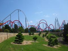 Roller Coaster Skyline