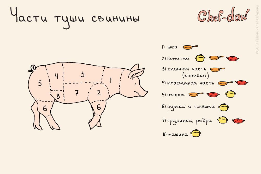 chef_daw_chasti_tushi_svinini