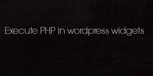 Execute PHP Code in WordPress Widget   by Anil Kumar Panigrahi
