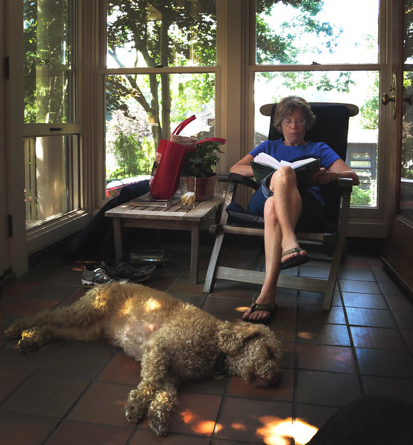Mom reading in the sunroom with Bucky (2013)