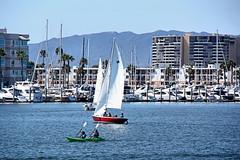 Venice. Ventura. Marina del Rey. California.