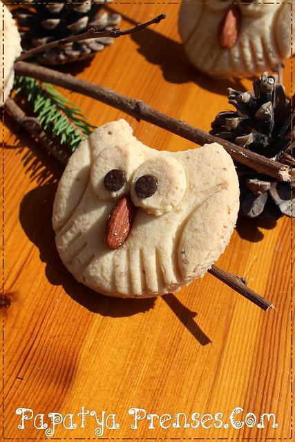 baykuş kurabiye 019