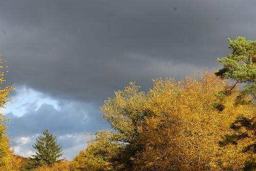 Luxemburg herfst