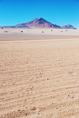 Dali Desert, Eduardo Avaroa Andean Fauna National Reserve, Bolivia