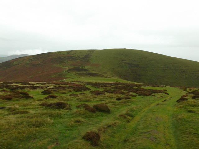 Pen y Fan and Pole Bank walk 257