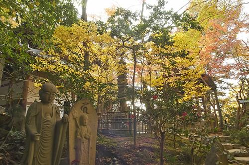 【写真】紅葉 : 長楽寺