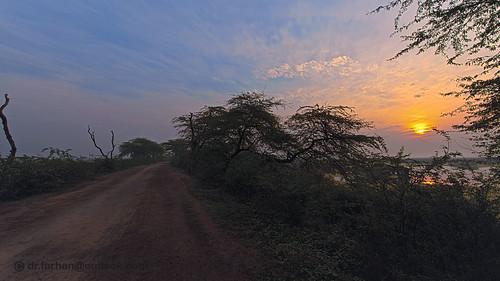 sunrise walking nikon head path passion nationalgeographic naturelover d600 marala nikkor70200mmf28 headmarala