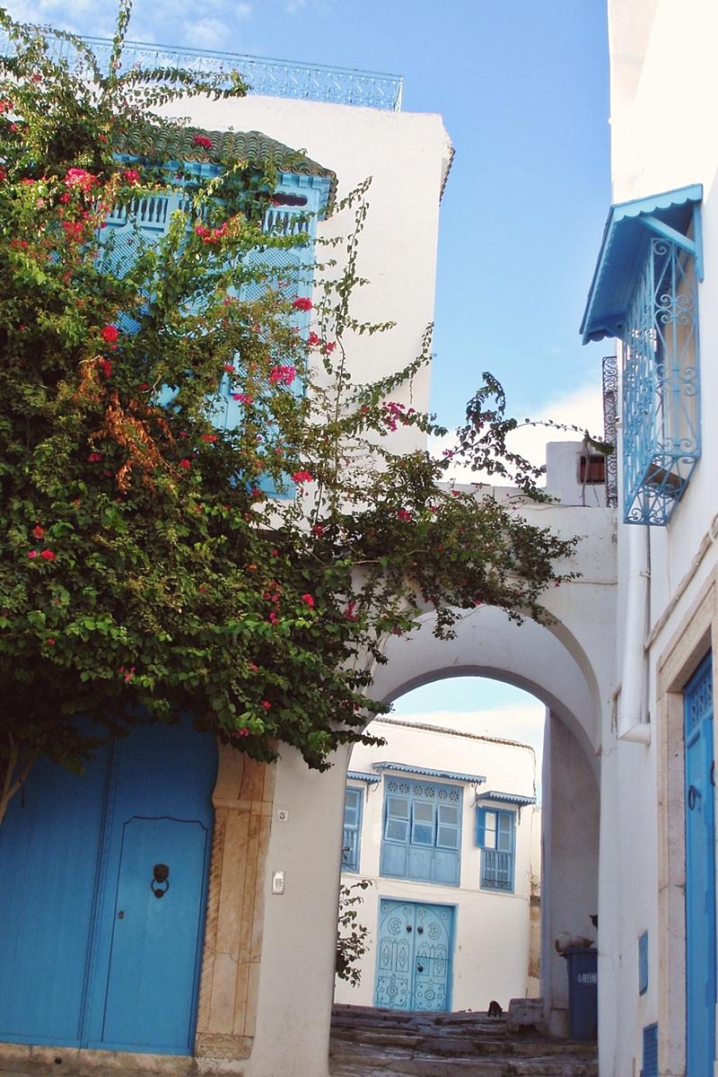 Sidi Bou Saïd (2)