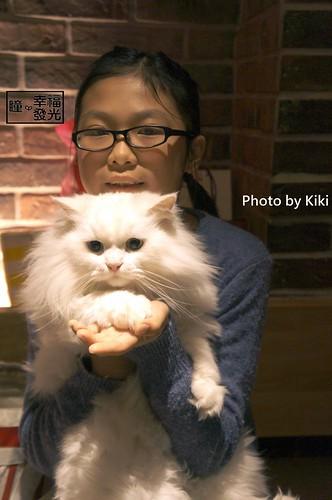 cat_5th (44)