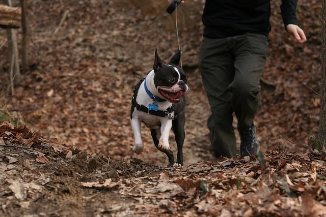 Charlie Powhite Hike Feb 2 (59)