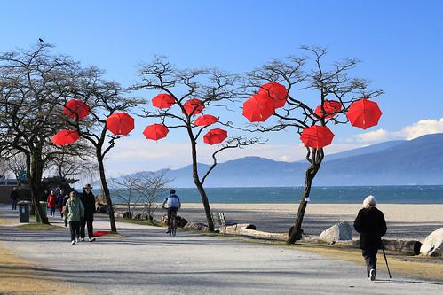 red umbrellas stuck in trees by Eyesplash - feels like spring