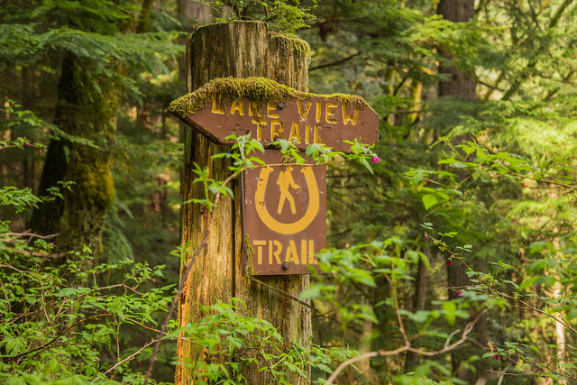 Lakeview Trail sign