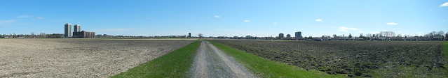 Walking the Farm 7