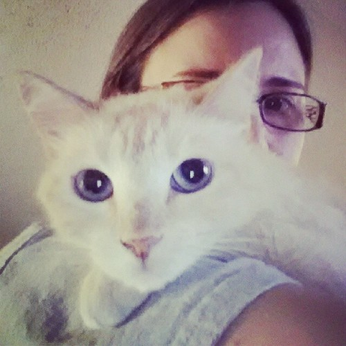 Kitty #selfie!