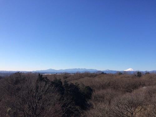 狭山丘陵トレラン