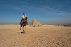 Sebastian on a camel, with the Pyramids of Giza