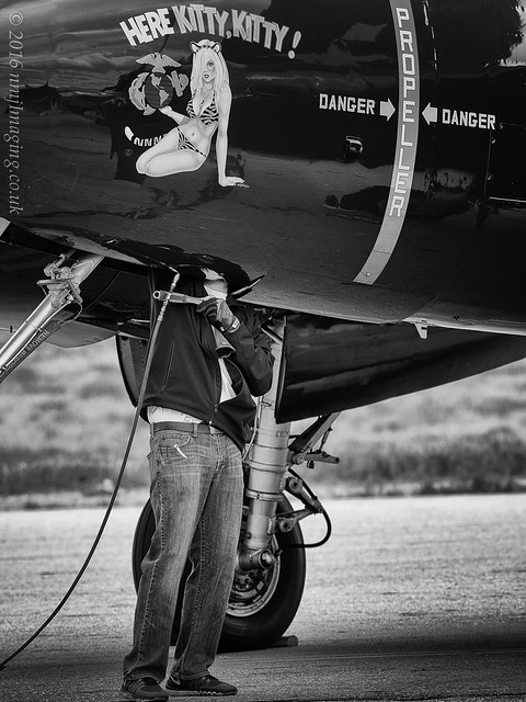 Close Inspection; Planes of Fame Airshow 2016