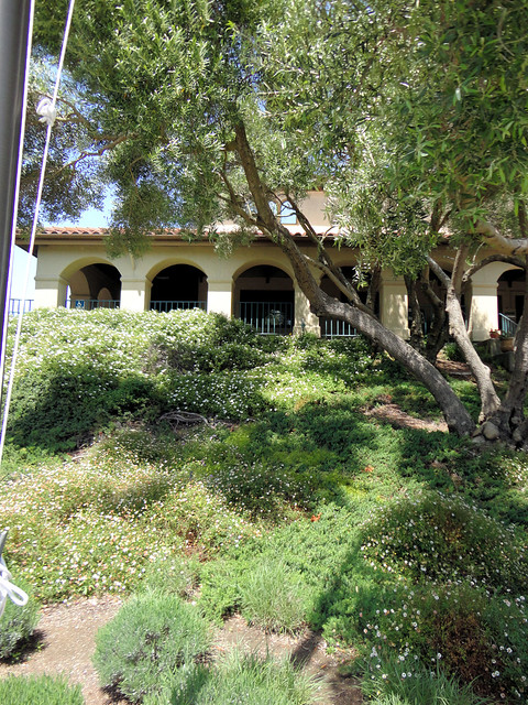 Sonoma Valley Homes For Sale