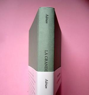 Chris Adrian, La grande notte. Einaudi 2013. [resp. gr. non indicate]; alla cop.: Sean Boggs/Vetta/Getty Images. Sovracoperta e copertina (part.), 1