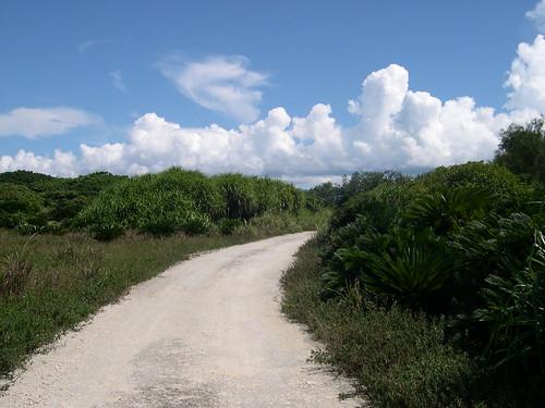 【写真】離島めぐり : 一周道路