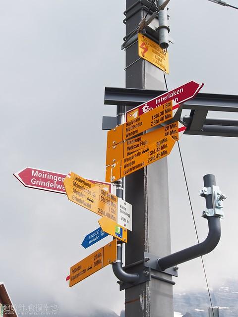 Kleine Scheidegg road sings