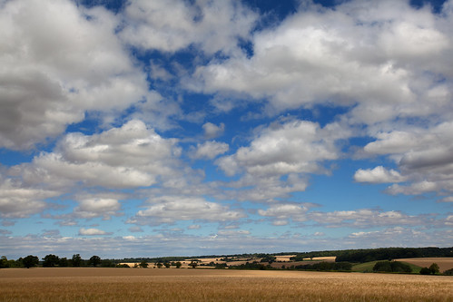 hertfordshire whitwell roantrum mf13