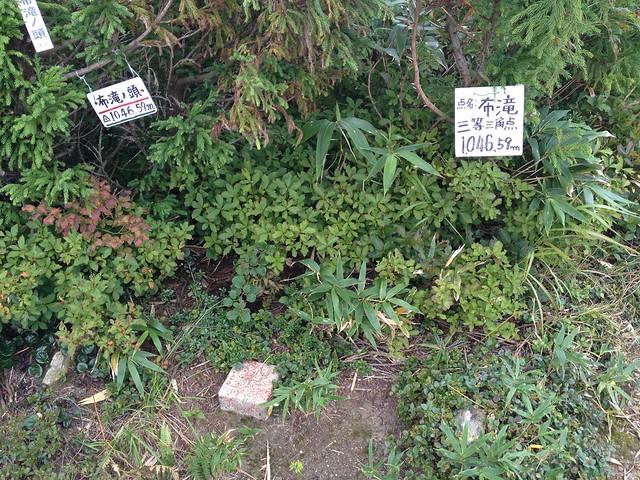 金草岳 P1046 三等三角点 「布滝」