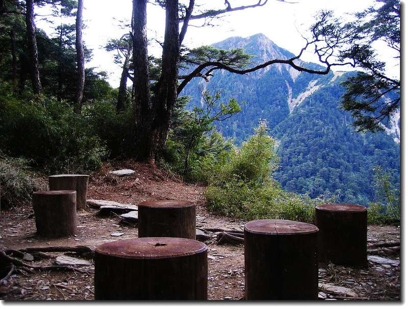 圓木休息區