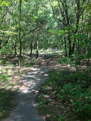 Trail At Killbear Park