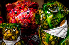 Green dogs and red piggybank
