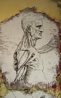 Anatomie du corps humain selon Da Vinci DDC_9544