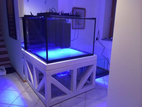 aquarium 100x100x60