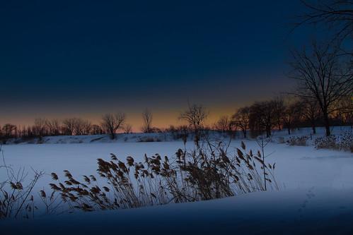 winter snow night landscape evening montréal hiver neige paysage soir nuit