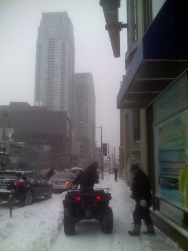 Winter snowfall, 12 March 2014 (1)