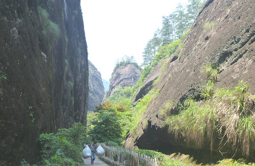 Fujian-Wuyi-Shuillandong-Dahongpao (124)