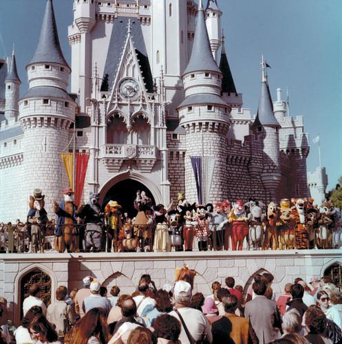 WDW-43-50 - Walt Disney Characters