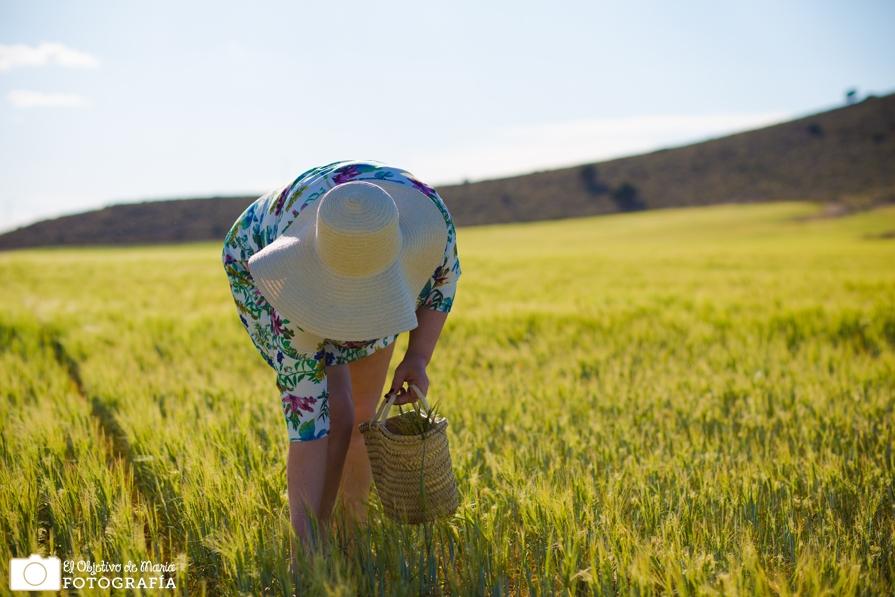 Mi madre recogida de trigo