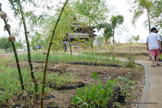 bamboo-palace-gk-enchanted-farm.jpg