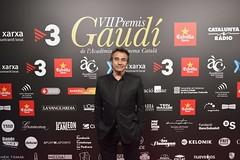 Catifa vermella VII Premis Gaudí (26)