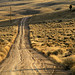 Rutted Road by arbyreed