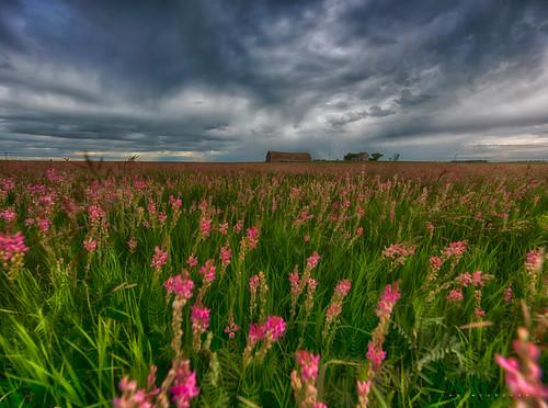 canada field barn photography nikon farm prairie saskatchewan ianmcgregor ianmcgregorphotographycom