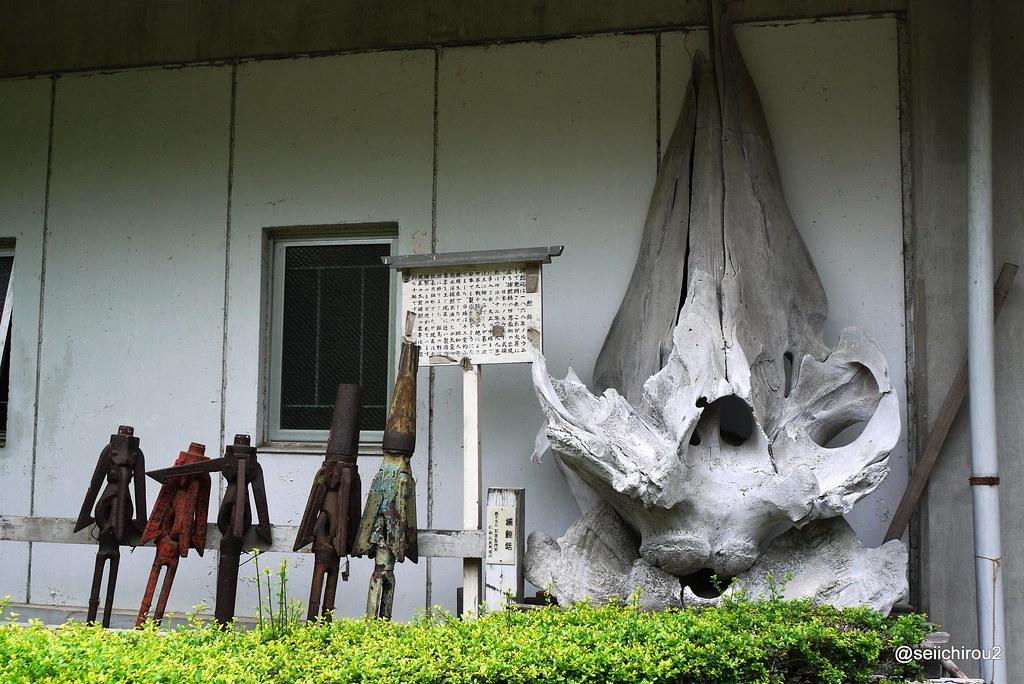 鹽竈神社 鯨骨