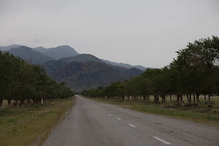 Driving to Altyn Emel National Park