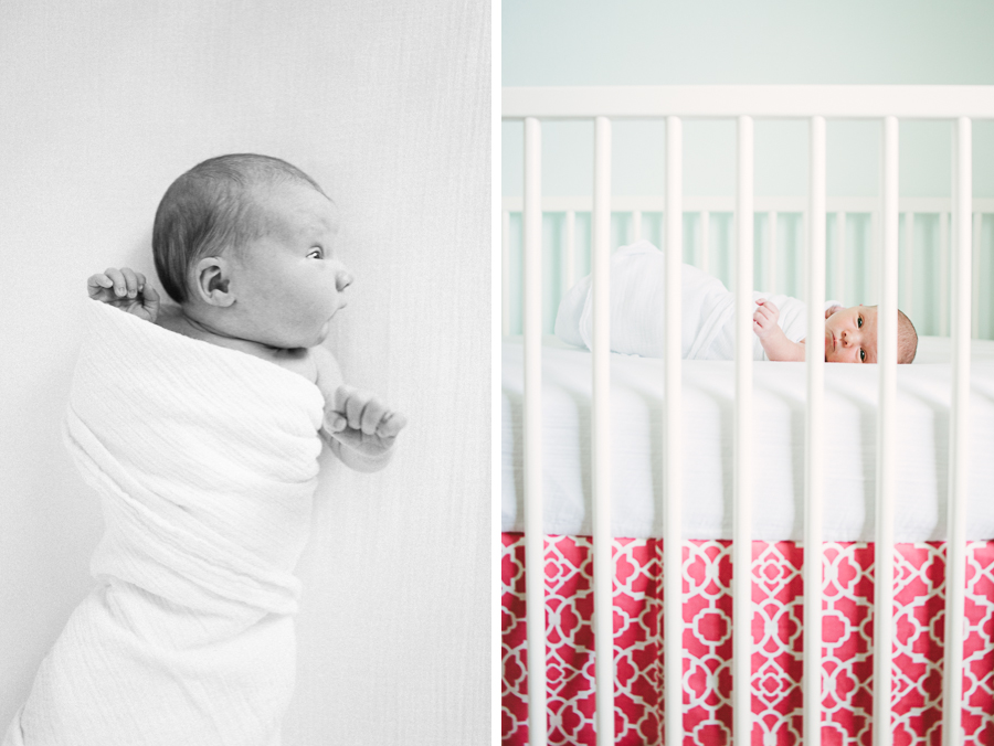 olivia newborn and sibling photos zoe d photography