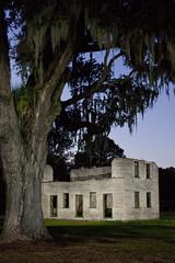 night plantation