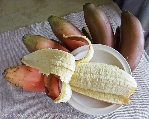red skinned banana 256936_10151087209523276_1918880898_o