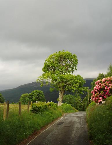 After the sun, the rain