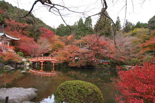 【写真】2012 紅葉 : 醍醐寺/2020-08-07/IMGP6861