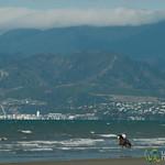 Horseback Riding at Rabbit Island - Nelson, New Zealand