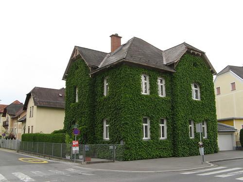 house austria vine graz styria